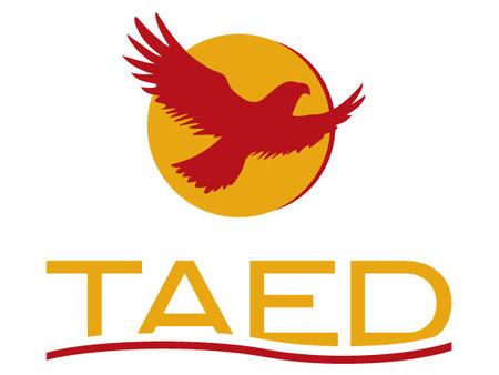 TAED Logo
